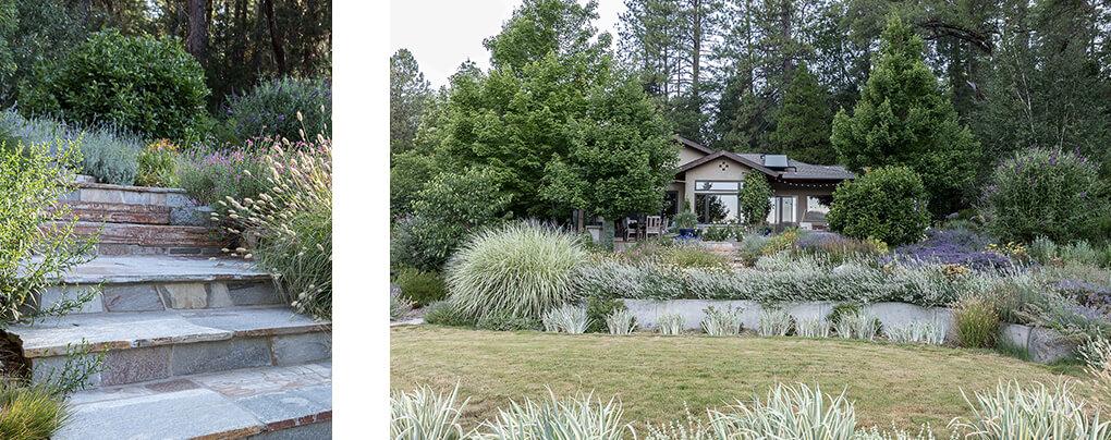 Lewis Rd. Nevada City, CA Landscape Architect